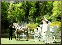 ふたりの幸せを運ぶ馬車~プリンセスガーデンウェディング